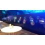 Kép 6/8 - 3D holografikus LED ventilátor 100cm kiállításon